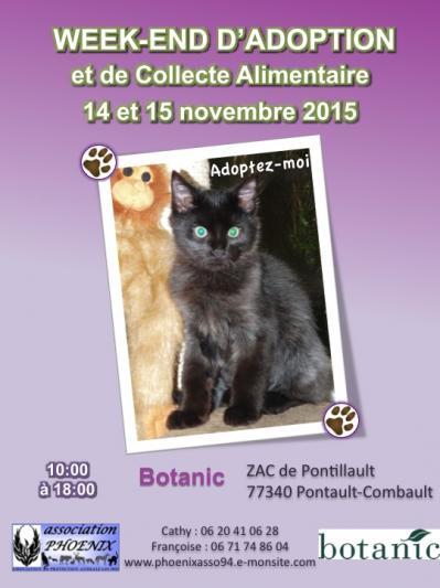 20 affiche botanic nov