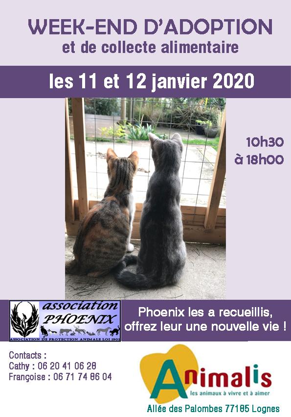 Affiche 1 2020