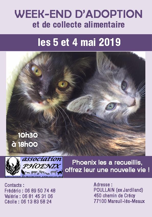 Affiche 14 2019