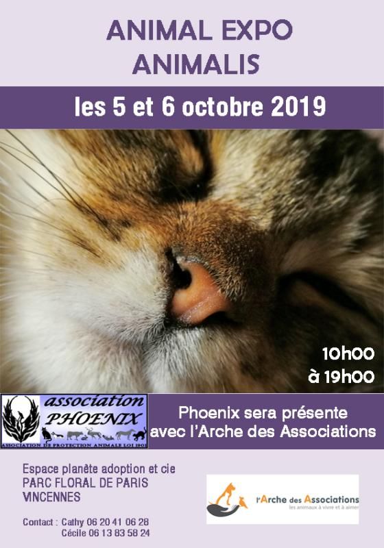 Affiche animal expo2019