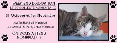 Affiche mouroux oct