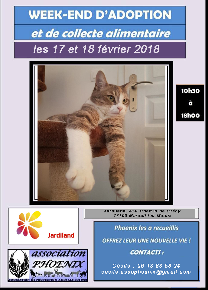 Affiche17 fev 2018 1 modifie 1