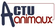 Logo actu animaux 1